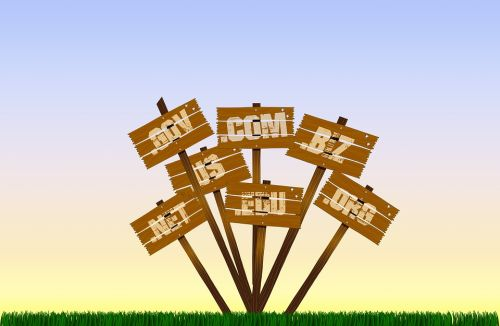 How to get refunds for wrongly registered domain names?